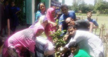 রুপার খামার সরকারি প্রাথমিক বিদ্যালয়ে অরণ্য-এর বৃক্ষরোপন