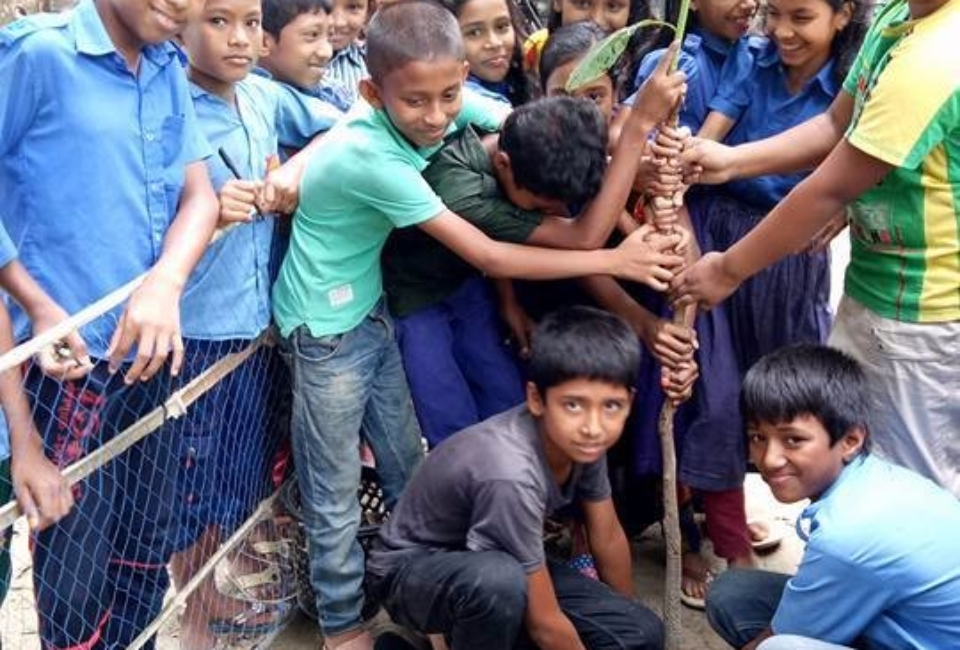 Ulipur-Upazila-Primary-School-Tree-Plantation-2017-3