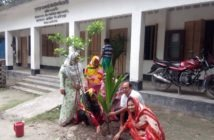 Ulipur Upazila Primary School Tree Plantation Program 2017