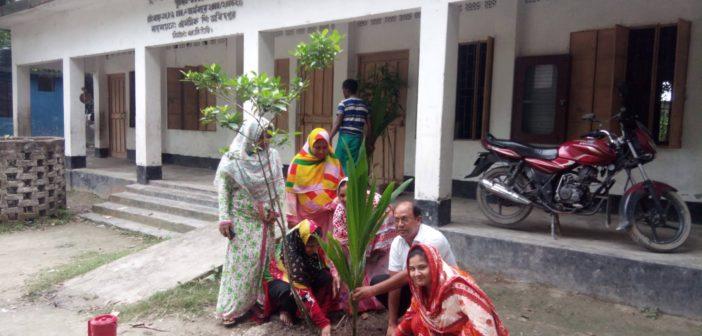 Ulipur Upazila Primary School Tree Plantation Program 2017