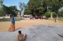Rice Mills Ulipur (Kurigram) 2017